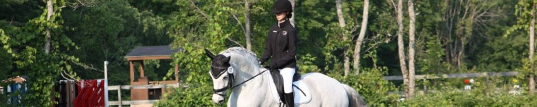 cropped-cantering-gmha-july1.jpg
