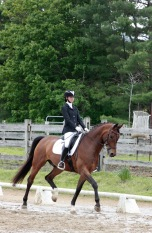 First schooling show 2017