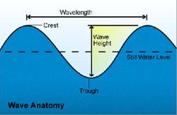 waveanatomy